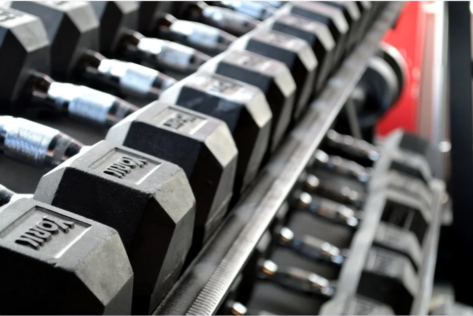 Top 5 Best GYMs in Chandigarh