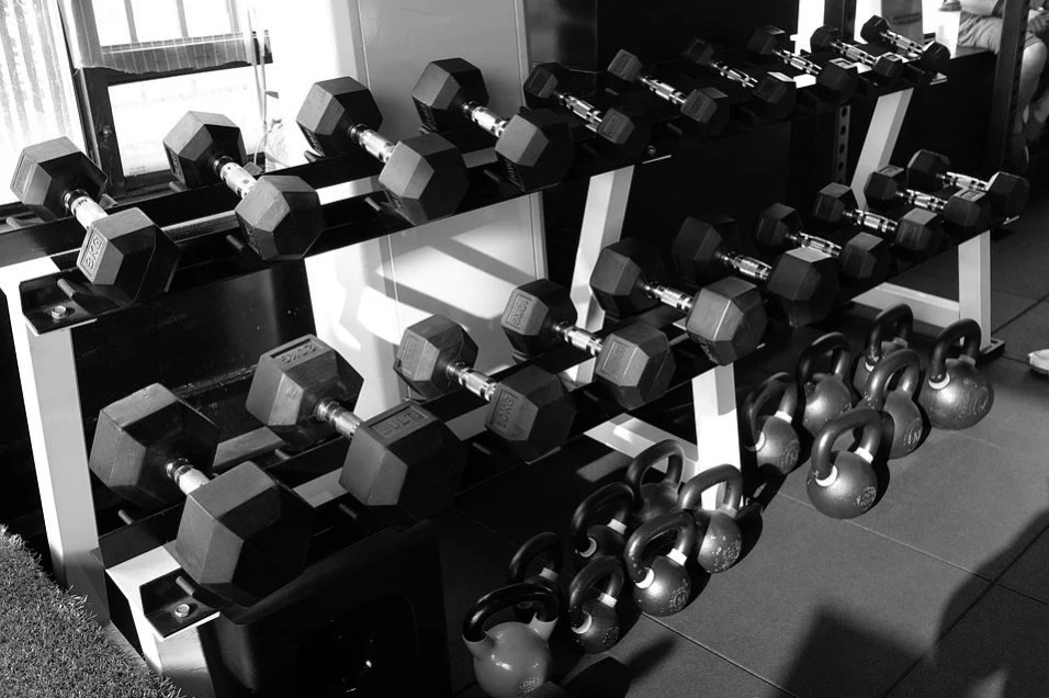 Top GYM in Chandigarh